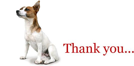 Dog Thank You
